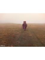 06. Армения 2019 год. Через собак и облака к цивилизации