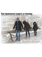 Гололед и походка пингвина