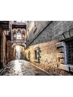 Barri Gotic – живое прошлое города