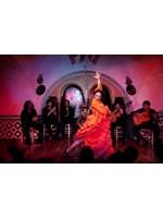 Шоу Фламенко в Барселоне — потрясающий «коктейль»