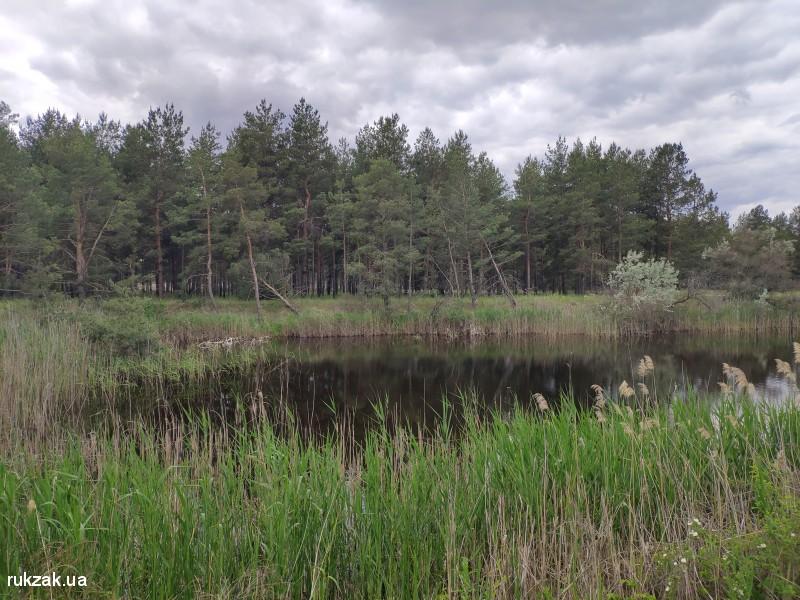 Лесное озеро - противопожарный водоём